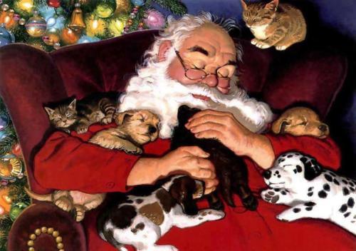 Santa pets
