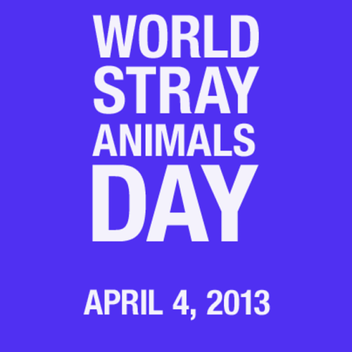 stray animals day